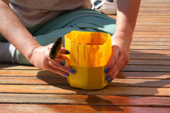 Varnishing. Woman apply varnish on wood deck Stock Photography