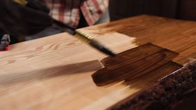 Varnishing a wood with a brush. Carpenter is using brush to varnish giant piece of wood indoor. Carefully smearing varnish on surface stock video footage
