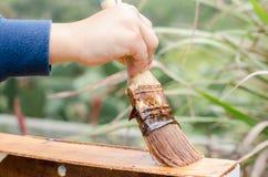 Varnishing wooden box. While varnished wooden box, horizontal photo Royalty Free Stock Image