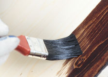 Varnishing a wooden shelf Royalty Free Stock Photo