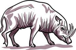 varrão ilustração stock