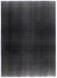 Varredura de alta resolução de um grun Foto de Stock
