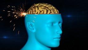 Varredura de cérebro Fotografia de Stock