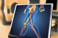 Varredura humana da radiografia ilustração royalty free