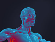 Varredura humana futurista da anatomia ilustração royalty free