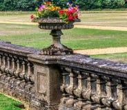 Vas av blommor i en utomhus- trädgård i ön av wighten, UK, England Royaltyfri Fotografi