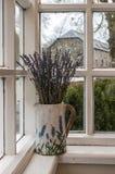 Vas av torkad lavendel royaltyfria bilder