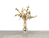 Vas med en dekorativ filial Royaltyfria Foton