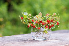 Vas med jordgubbar på trätabellen Royaltyfri Fotografi