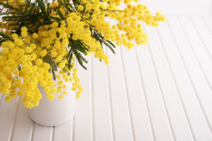 Vas med mimosablommor royaltyfri fotografi