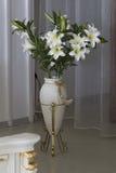 Vas med vita blommor. Arkivfoton