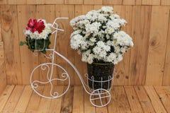 vas och blomma Royaltyfri Foto