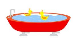 Vasca con le anatre di nuoto Fotografia Stock