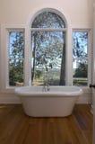 Vasca da bagno con una vista Immagine Stock