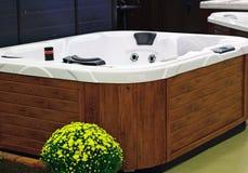 Vasca di massaggio Fotografia Stock