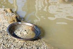Vaschetta dell'oro Fotografia Stock Libera da Diritti