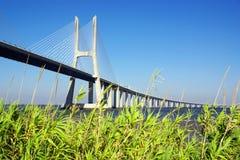 Vasco da Gama Bridge. Detail of Vasco da Gama Bridge and surrounding park in Lisbon Portugal royalty free stock images