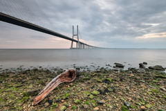 Vasco da Gama Bridge, with beautiful colors of Sunrise Royalty Free Stock Image