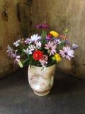 Vase à Flourishe Photos libres de droits