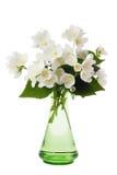vase à jasmin de bouquet Photographie stock libre de droits