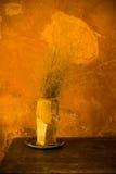 Vase à porcelaine sur la table photos libres de droits