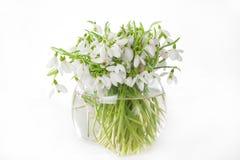 vase à snowdrops Photo libre de droits