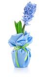 vase άνοιξη γυαλιού λουλο&ups Στοκ εικόνες με δικαίωμα ελεύθερης χρήσης