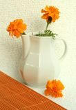 vase λουλουδιών άσπρος κίτρινος Στοκ εικόνες με δικαίωμα ελεύθερης χρήσης