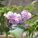 vase λουλουδιών στοκ εικόνα