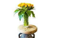 vase λουλουδιών κίτρινο Στοκ εικόνα με δικαίωμα ελεύθερης χρήσης