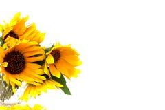 vase λουλουδιών κίτρινο Στοκ φωτογραφίες με δικαίωμα ελεύθερης χρήσης