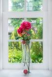 vase σπιτιών λουλουδιών χωρών windowsill Στοκ Εικόνα
