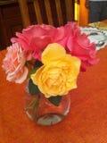 Vase των τριαντάφυλλων Στοκ Εικόνες