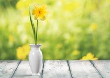 Vase image stock
