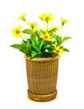 Vase Image libre de droits