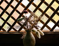 Vase with autumn dried  plants  on a windowsill. On a wooden background in the form of a grid window Stock Photography