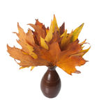 Vase of Autumn Leaves Royalty Free Stock Photo
