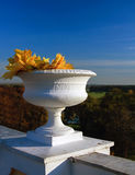 A vase with autumn leaves Royalty Free Stock Photography
