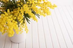 Vase avec des fleurs de mimosa Photographie stock libre de droits