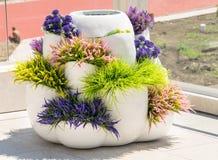Vase avec la végétation ornementale sur la terrasse d'un hôtel cinq étoiles dans Kranevo, Bulgarie Photos stock