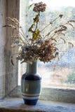 Vase avec les fleurs sèches Photo stock
