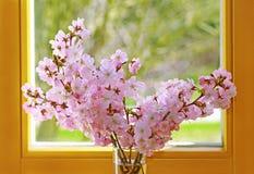 Vase avec un groupe de branches de floraison roses devant une fenêtre photographie stock