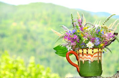 Vase with beautiful forest flowers Royalty Free Stock Images