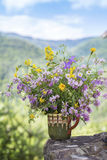 Vase with beautiful forest flowers Royalty Free Stock Photos