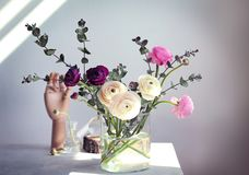Vase with beautiful fresh ranunculus flowers. On table Royalty Free Stock Image