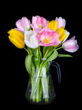 Vase of Beautiful Tulips flowers isolated on black background Royalty Free Stock Photos