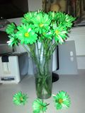 Vase Stock Photos