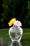 Vase blühende Blumen Stockbild