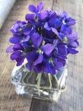 Blue / Purple Violet Flowers in Vase. Vase of blue or purple violet flowers royalty free stock photo