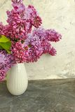 Vase bouquet of lilac on gray concrete stock photos